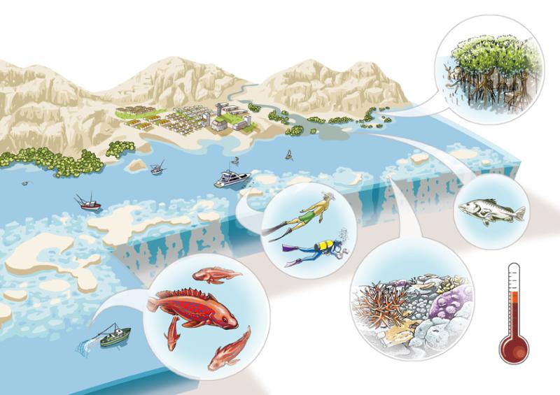 Reef Resillience Scenario
