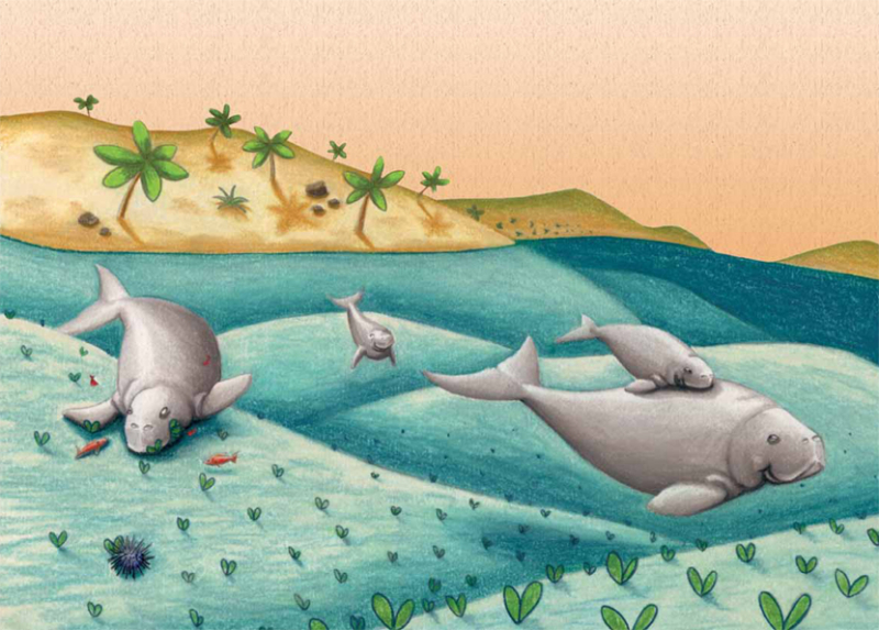 Dhyum The Dugong-1